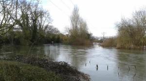 Ekologistak Martxan denuncia concentraciones de lindano en el río Zadorra